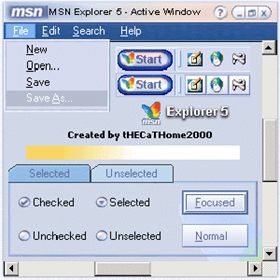 MSN Exp v5