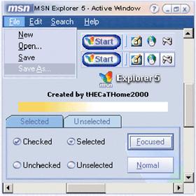 MSN Exp v5