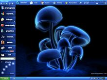 blue shrooms 1024x768