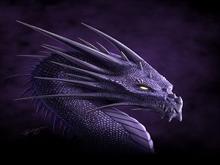 Purple Dragon by deligaris