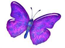 LiquidButterfly