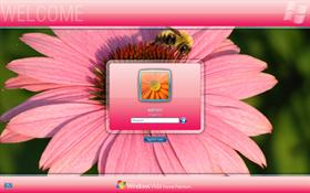 Pink LogonVista