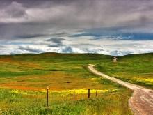 Long Winding Road II