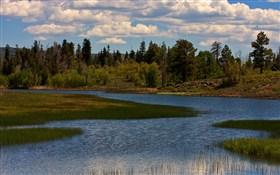 Kolob Pond