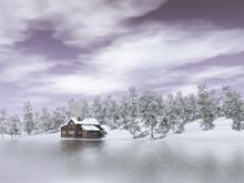 Winter Lake View