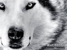 Wolf Edition