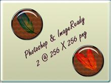 Photoshop & Imageready hardwoods