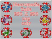 Macromedia Hollow
