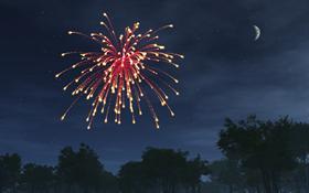 Happy New Year Fireworks - #winterdreams