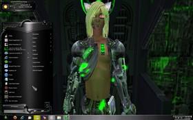 Borg 2011