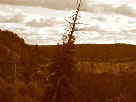 Grand Canyon V8
