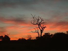 SA Sunset