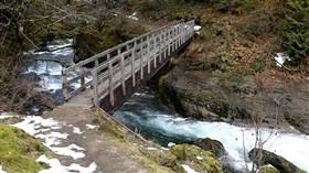 A Winter Stream