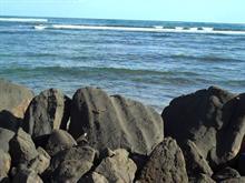 The Rocky Beach