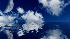 Midnite Sea