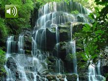 Dancing Waterfalls