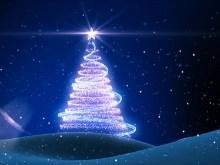Star Tree II