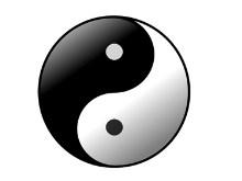 Yin Yang Spin