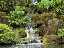 Zen Garden Falls