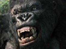Kong vs T Rex
