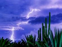 Desert Storm III