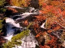 Autumn Falls a4