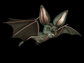 Toonanimal Bat