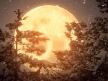 XMas Moon