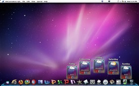 Windows OS X