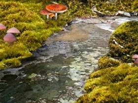 mossy stream v 2.0