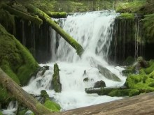 spring creek falls