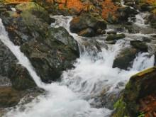 fast autumn falls