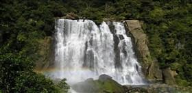 New Zealand Fall