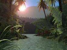 Jungle Glade
