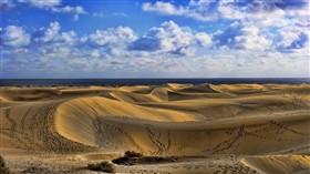 Dune Tracks LV