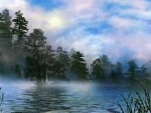 Foggy Breakdown
