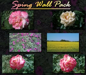 Spring Wall Pack